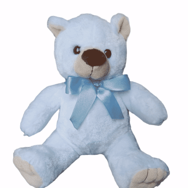 oso bernardo azul